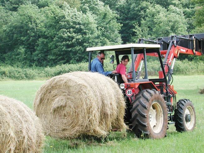 campo_trattore