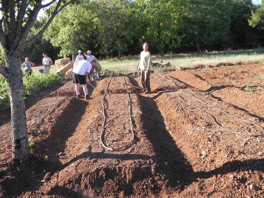 Realizzato l 39 orto sinergico per per parco dell for Impianto irrigazione orto