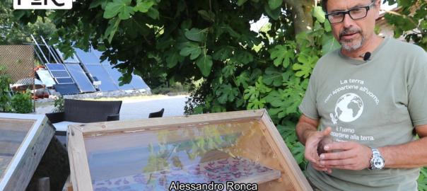 """Impara """"l'arte"""" dell'essicazione dei cibi con il calore del sole"""